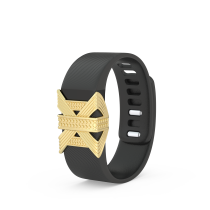 BLINGTEC LUMIÈRE FOR FITBIT CHARGE/CHARGE HR