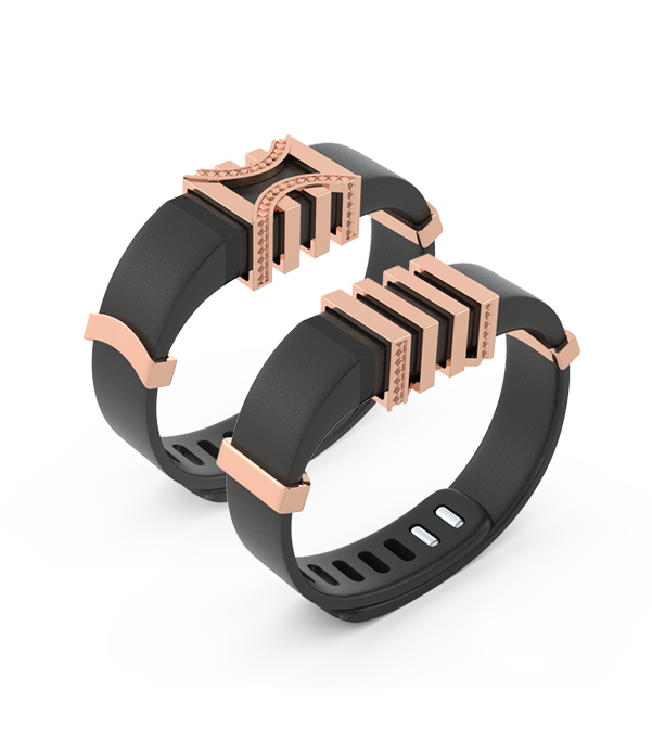 Blingtec fitbit product
